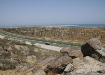 View from Bidiya Fort